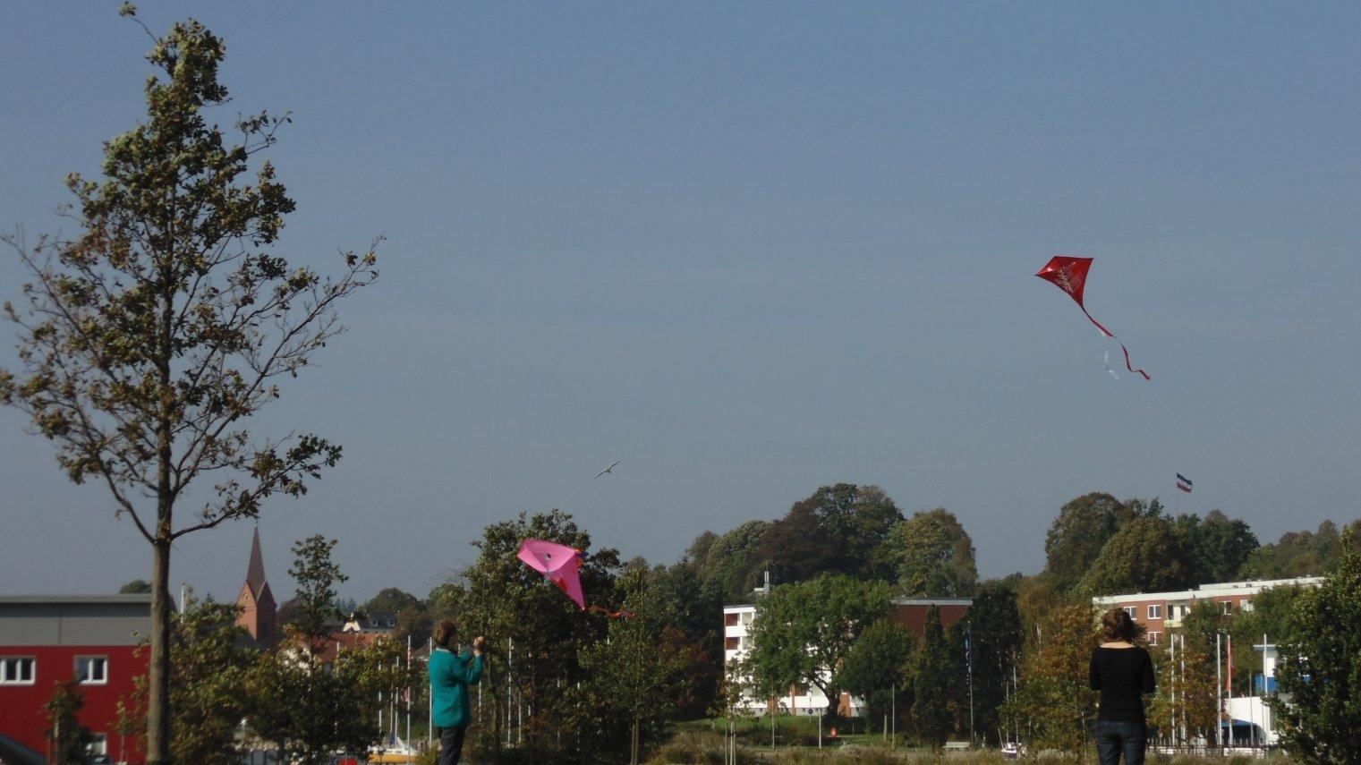 """""""Drachen statt Drohnen!"""" in Schleswig"""