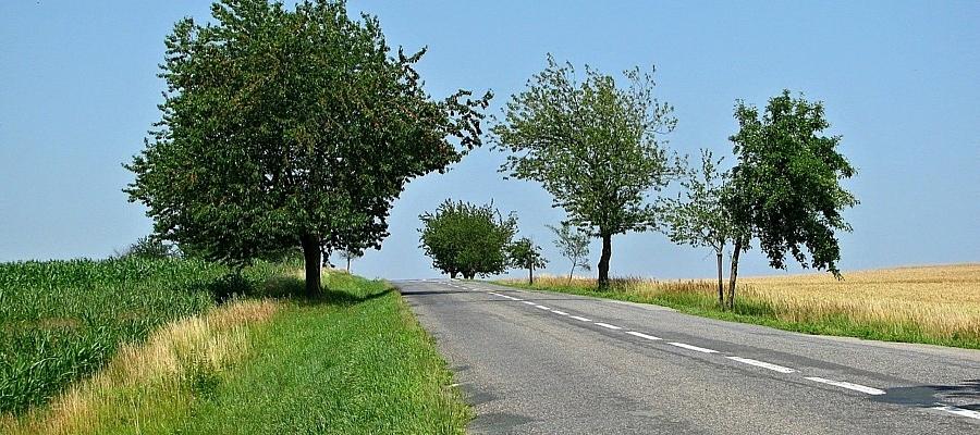 Landstraße (Symbolbild)