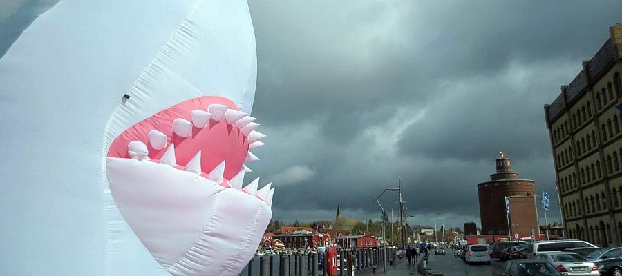 """Im Vordergrund ein 4m hoher aufblasbarer Hai (""""der Miethai""""), im Hintergrund der Hafen von Eckernförde."""