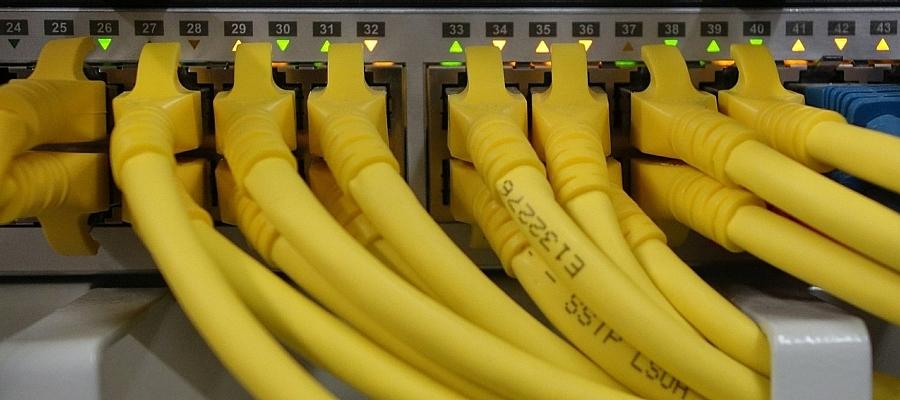 Foto von Netzwer-Kabeln, die an einem Switch angeschlossen sind.