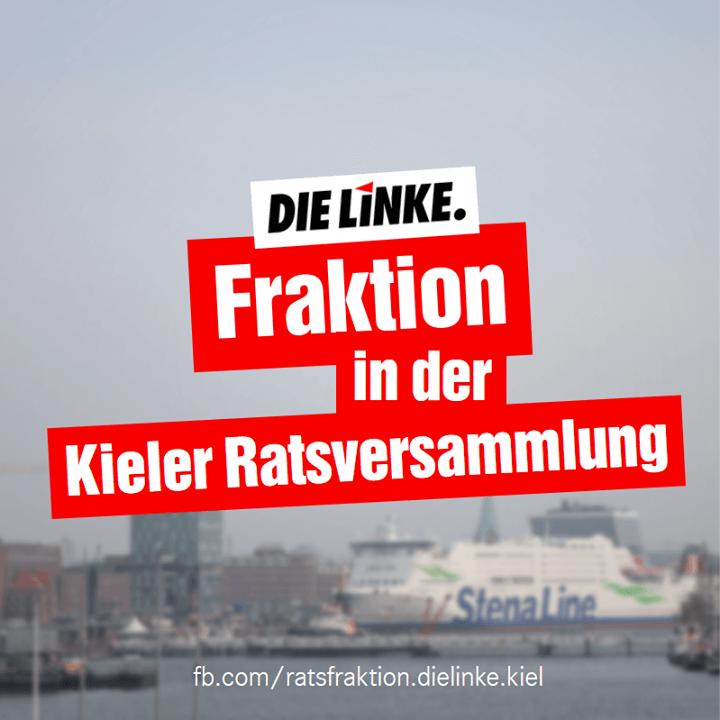 """Schriftzug: """"DIE LINKE. Fraktion in der Kieler Ratsversammlung"""", im Hintergrund ist eine Fähre im Kieler Hafen zu sehen."""