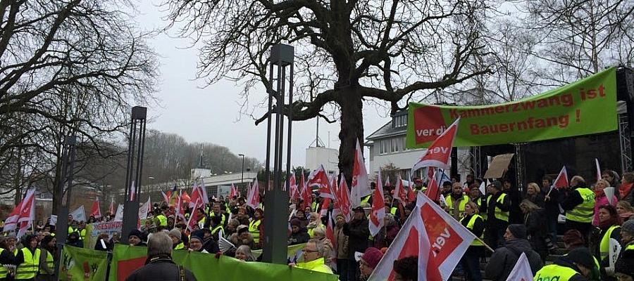 Demonstration der Gewerkschaft Verdi vor dem Landtag (21.01.2015)